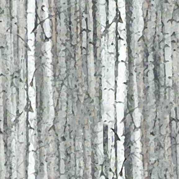 Woodland Holiday - White Birch