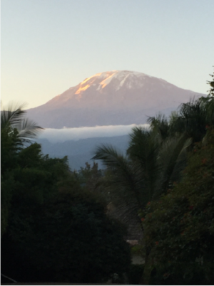 The majestic Kili, from a hour's drive away.