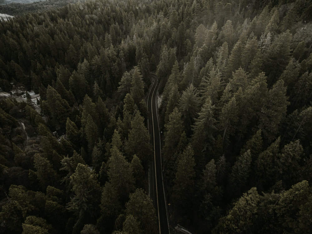 Arrowhead-0059.jpg