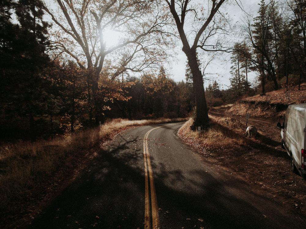 Arrowhead-0096.jpg