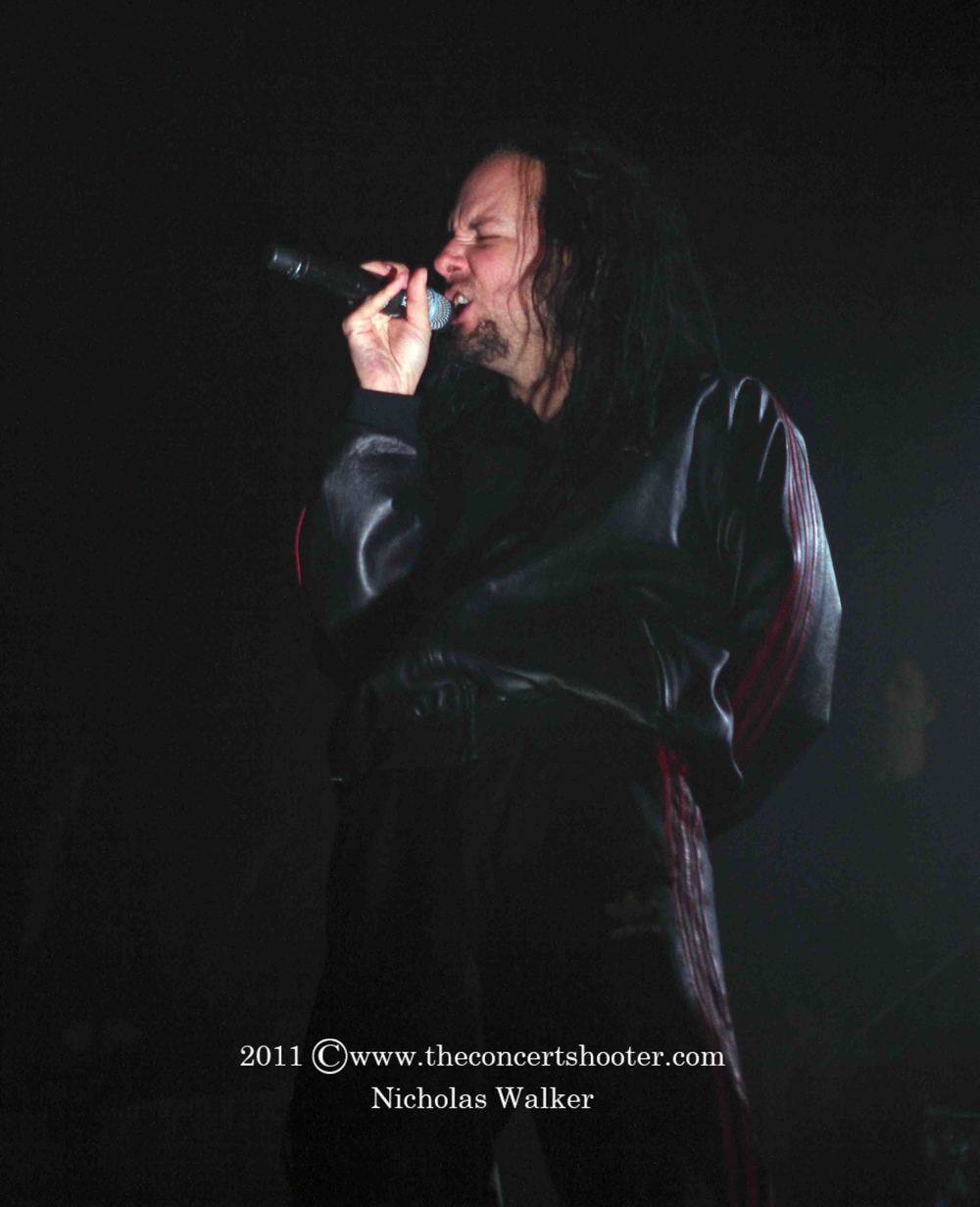 Korn (3).JPG