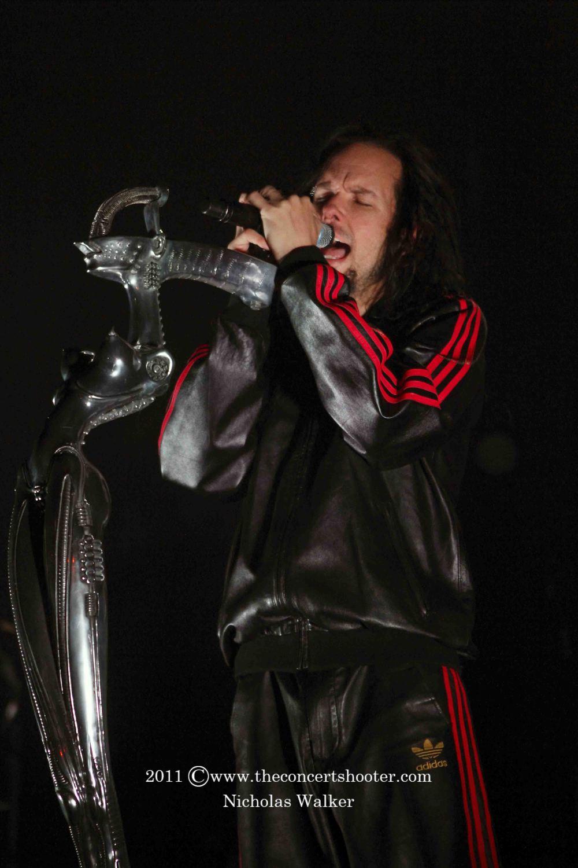 Korn (8).JPG