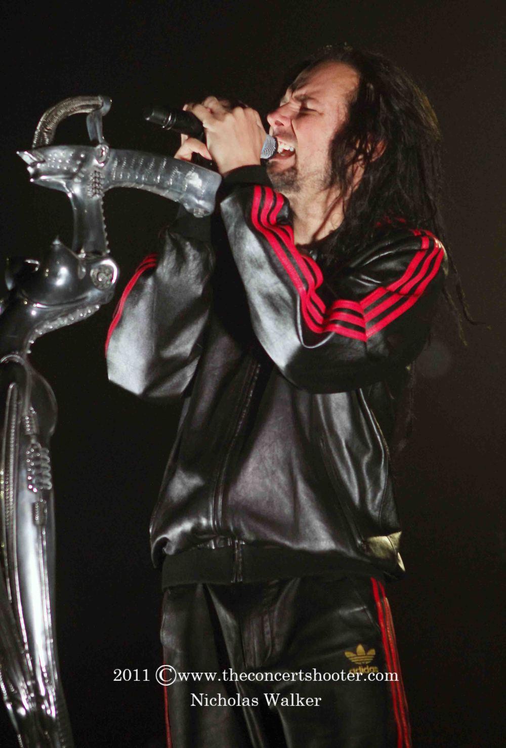 Korn (9).JPG