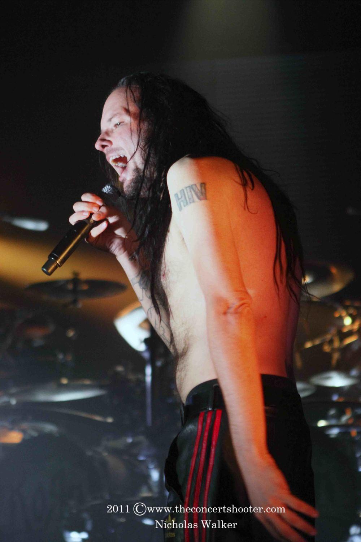 Korn (12).JPG