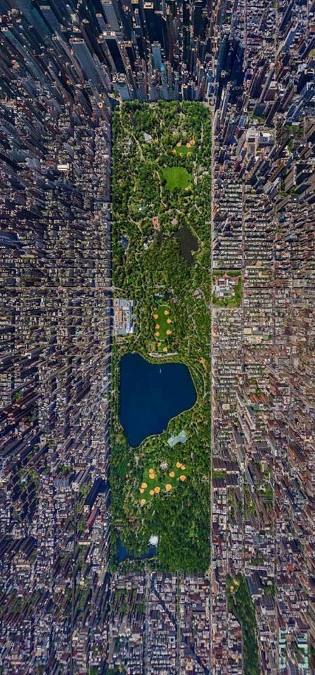 Central Park SERGEY SEMENOV.jpg