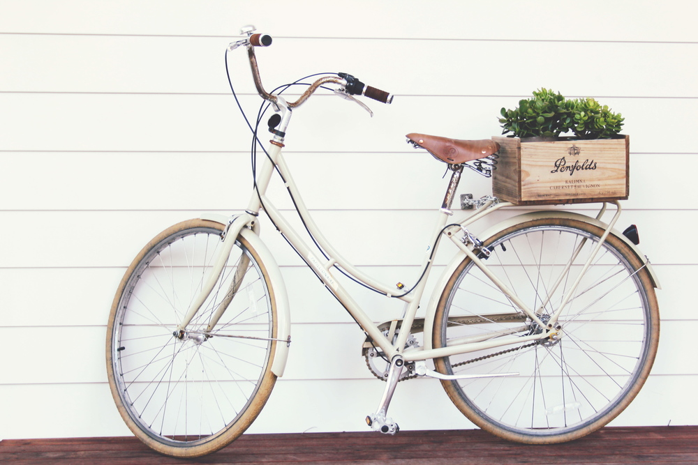 I love this pic of the bicycle at The Atlantic, Byron Bay {image via a blank blog}