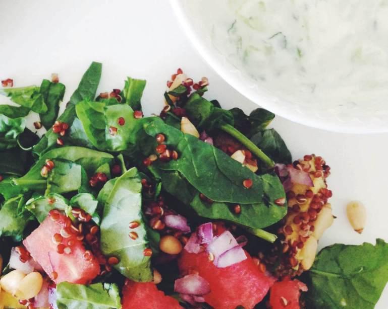 Herbalicious :: Fresh mint tzatziki dip & watermelon salad