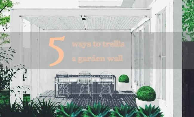 5 ways to trellis a garden wall | Slightly Garden Obsessed
