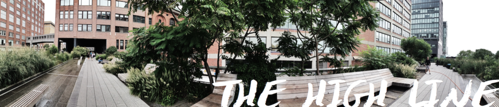 The High Line NYC | Slightly Garden Obsessed