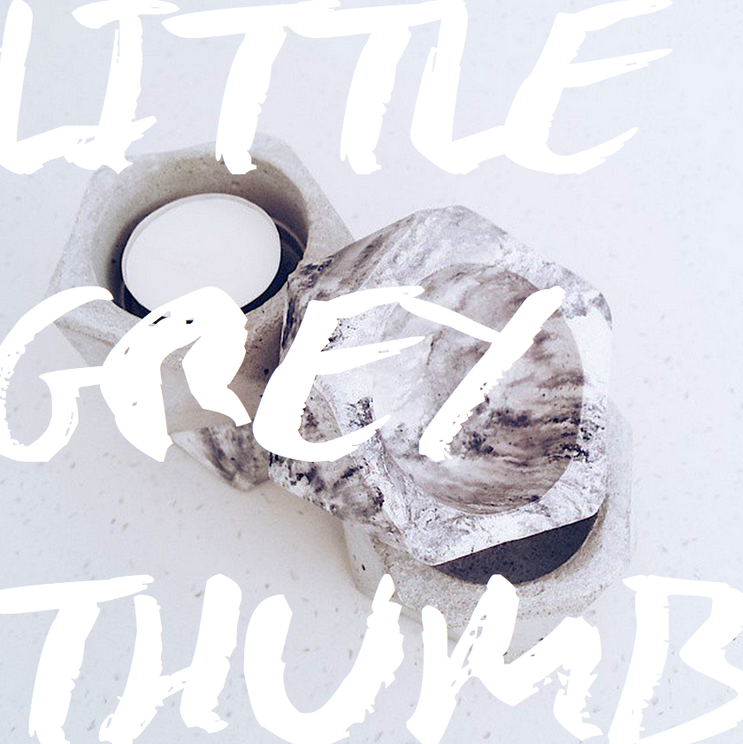 Little Grey Thumb | Slightly Garden Obsessed