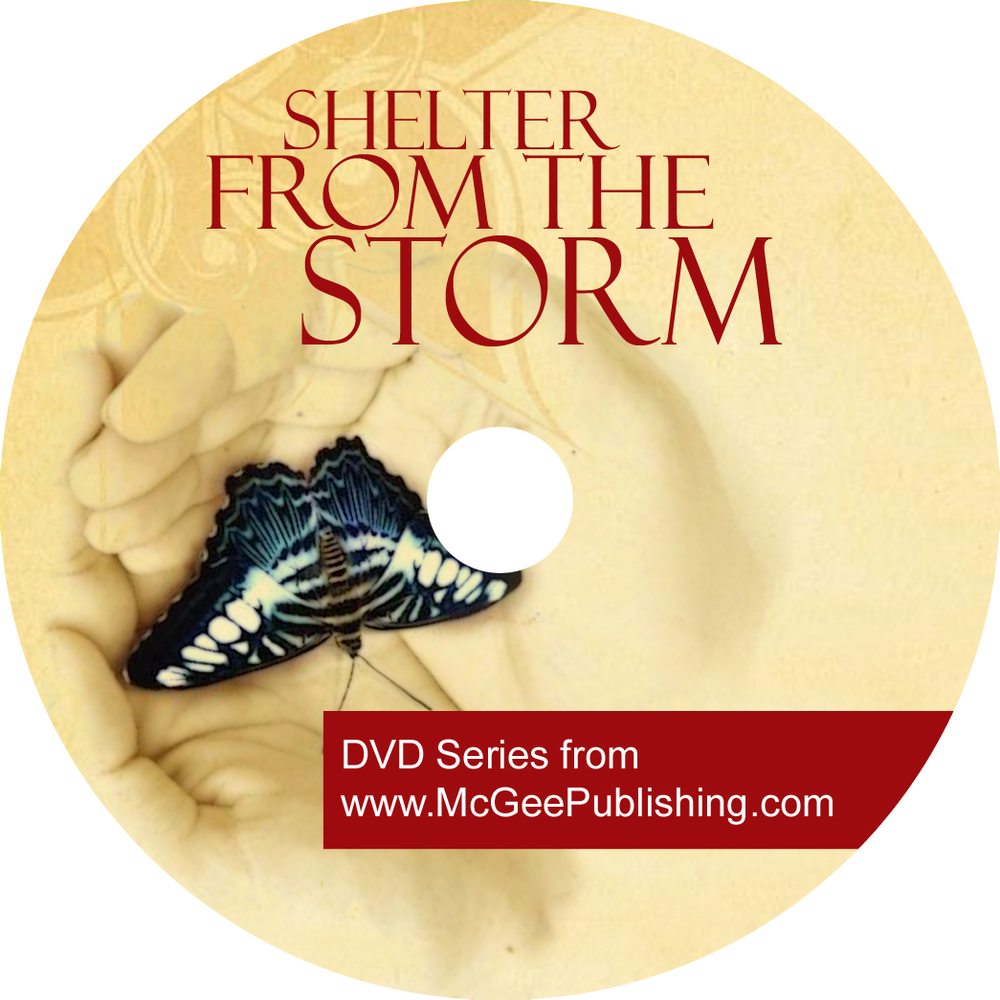 DVD label shelter from the storm copy.jpg
