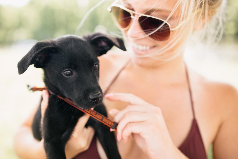 Sailing_With_Friends_Cute_Puppy-5.JPG