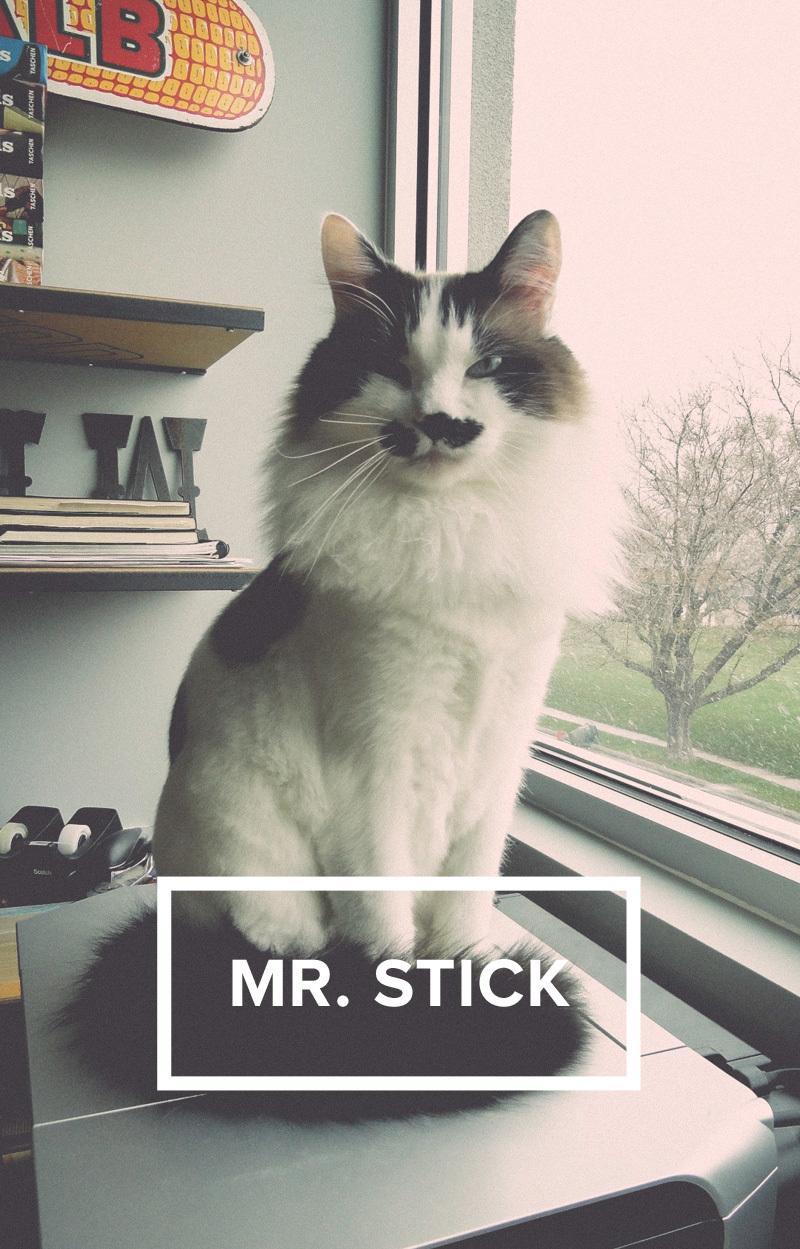 mr.stick.jpg