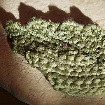 leaves-front.jpg
