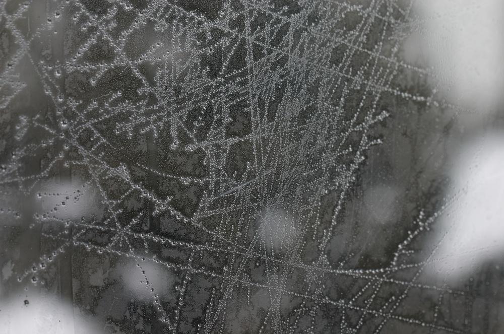 Window Frost.dng.jpg
