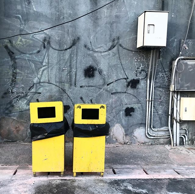 #trashcan #wall #streetart #streetinspiration #colorpop #ordinarythings #arteverywhere