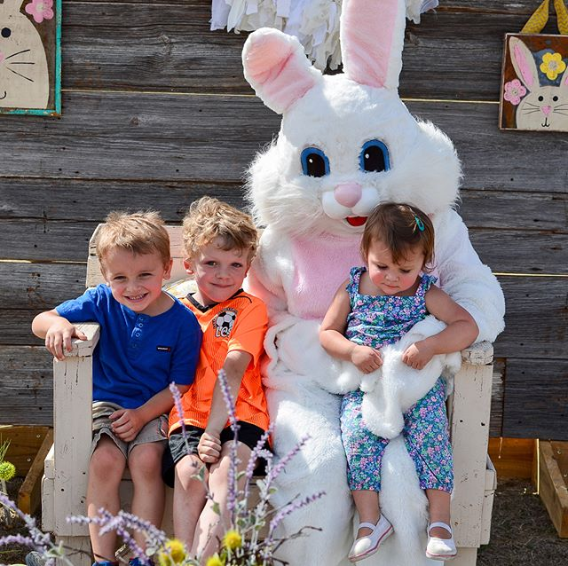 Meeting the Easer bunny, loving on little animals (Harper 😍😍) and a very successful Easter egg hunt. Today was a good day! @spencerhyde