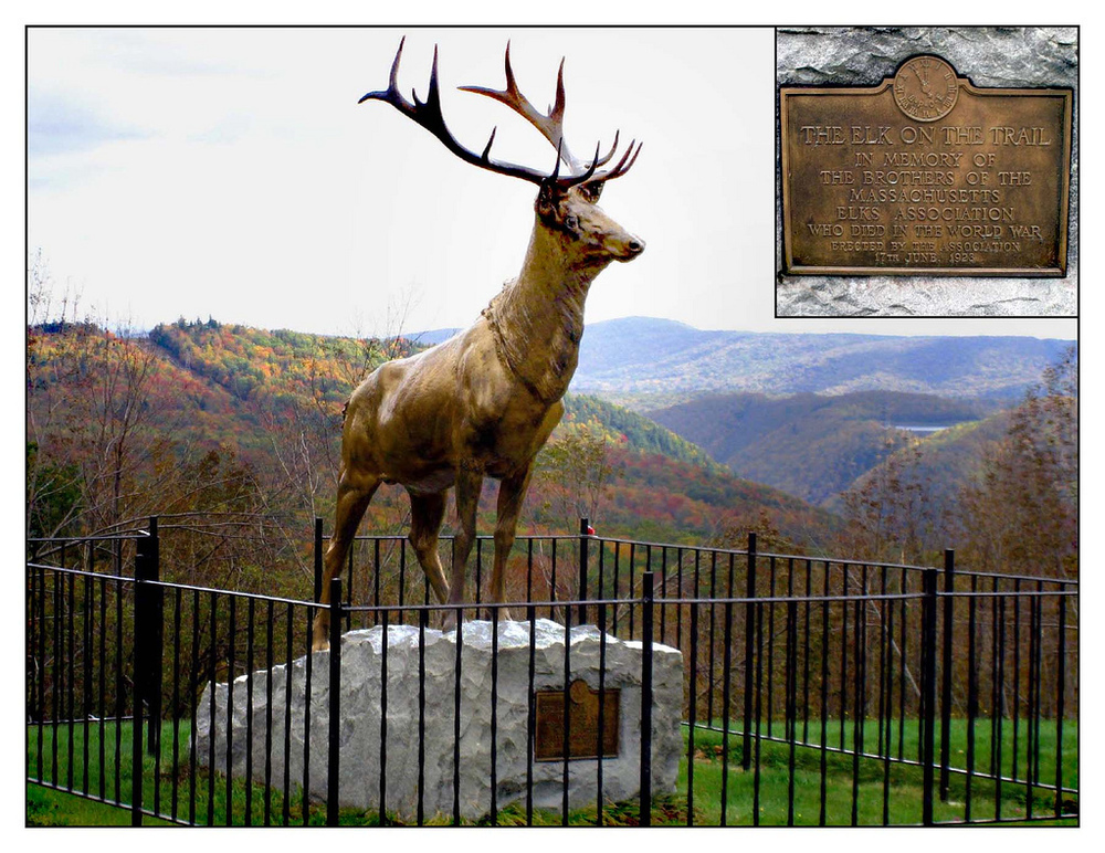 The Elk on the Mohawk Trail.jpg