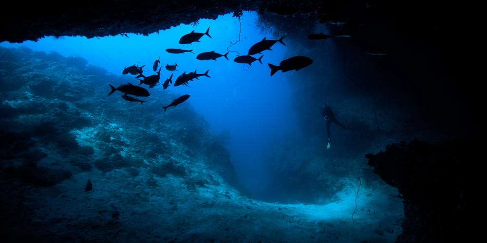 A diver exits an underwater cave...