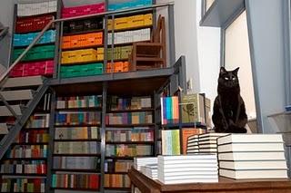 Factos da vida de André Jorge:editor da Livros Cotovia, amante de livros e de gatos. Um breve editorial em jeito de obrigada.