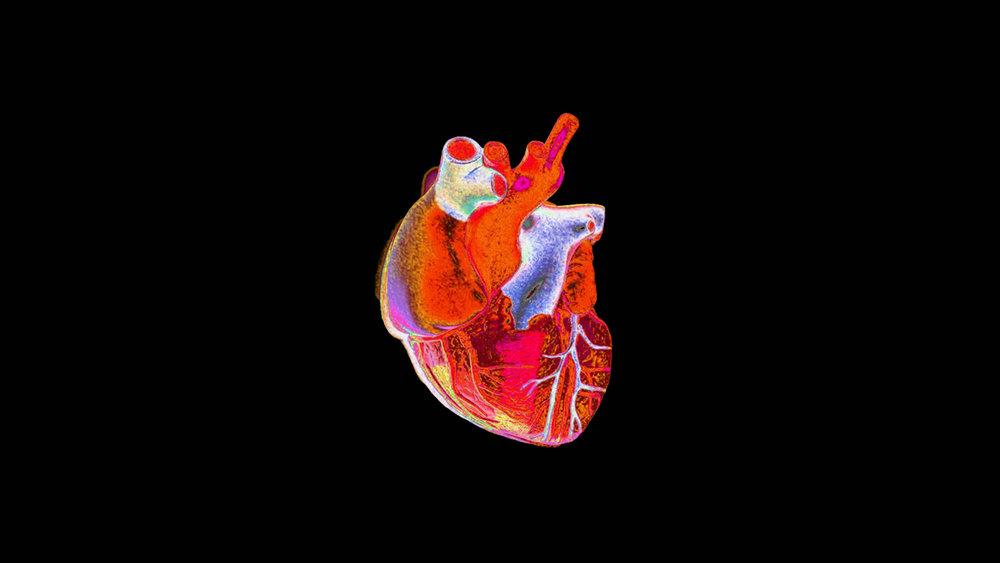 warhol-heart.jpg