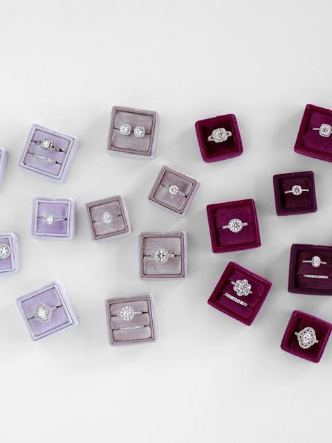 purples-vertical_480x.jpg