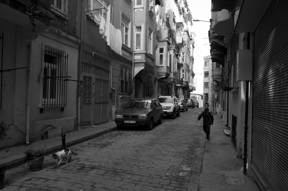Young boy walking after a cat in the streets of Beyoğlu district
