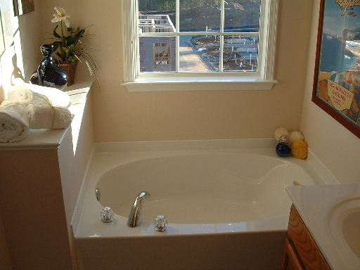 Bathroom 3-Townhomes.jpg