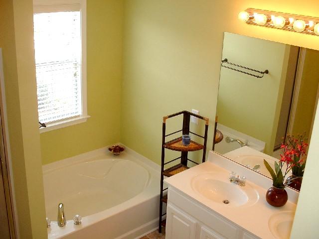 Bathroom Master 17-Townhomes.JPG
