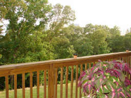Deck - Townhomes 7.jpg