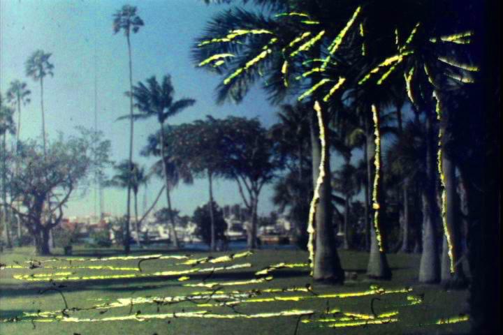 Elusive Landscape,Dinorah de Jesus Rodriguez, 2010.