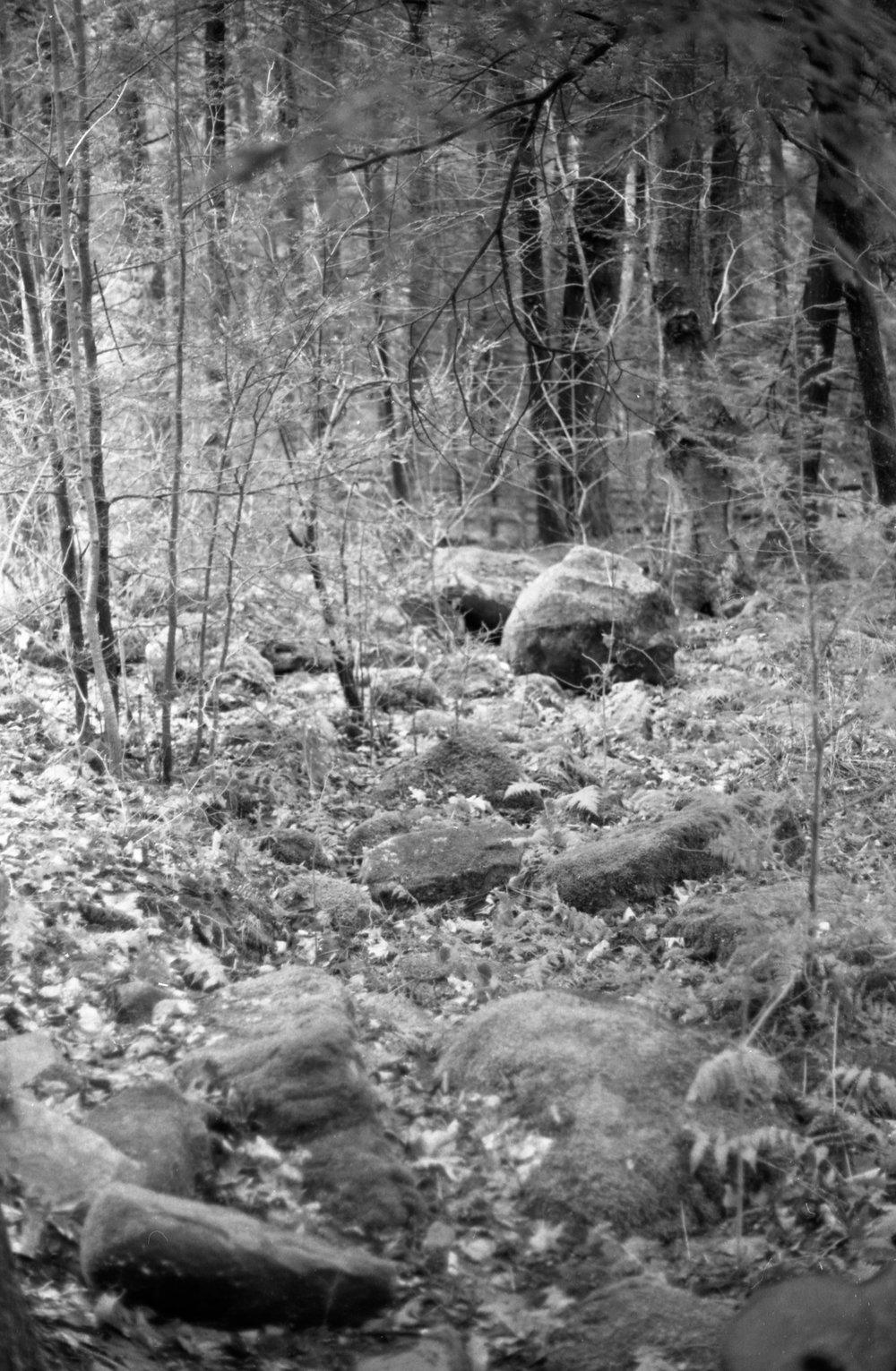 Film Scans-72.jpg