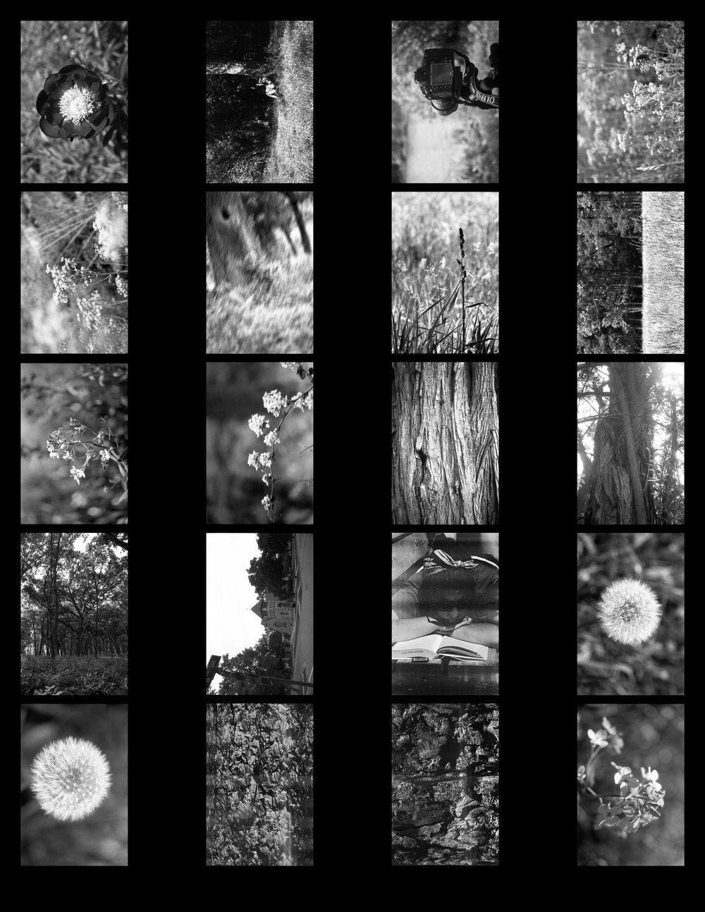 Film Scans-128.jpg