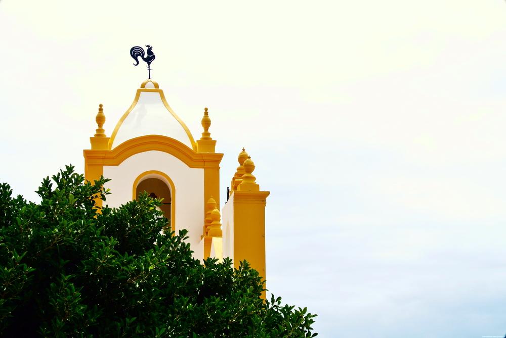 sea sage portugal 1