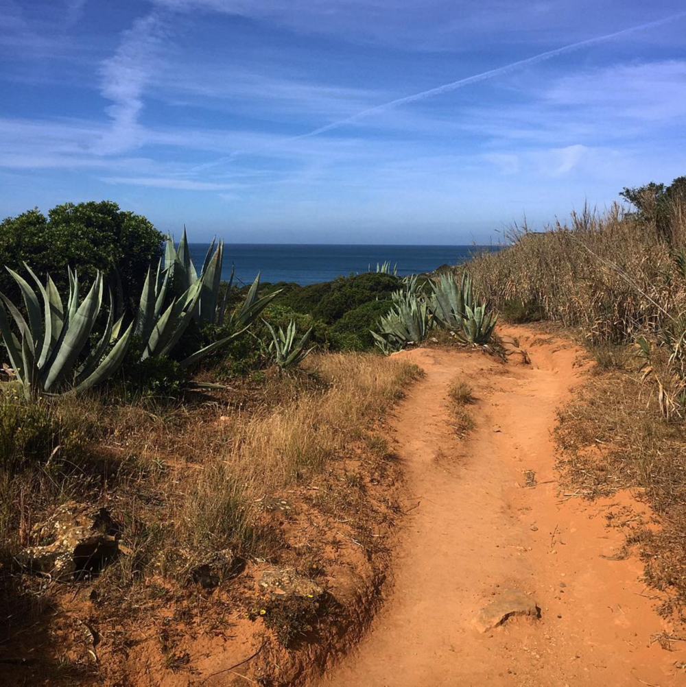 • sea sage sights: on the trail - hike from praia da luz to burgau •