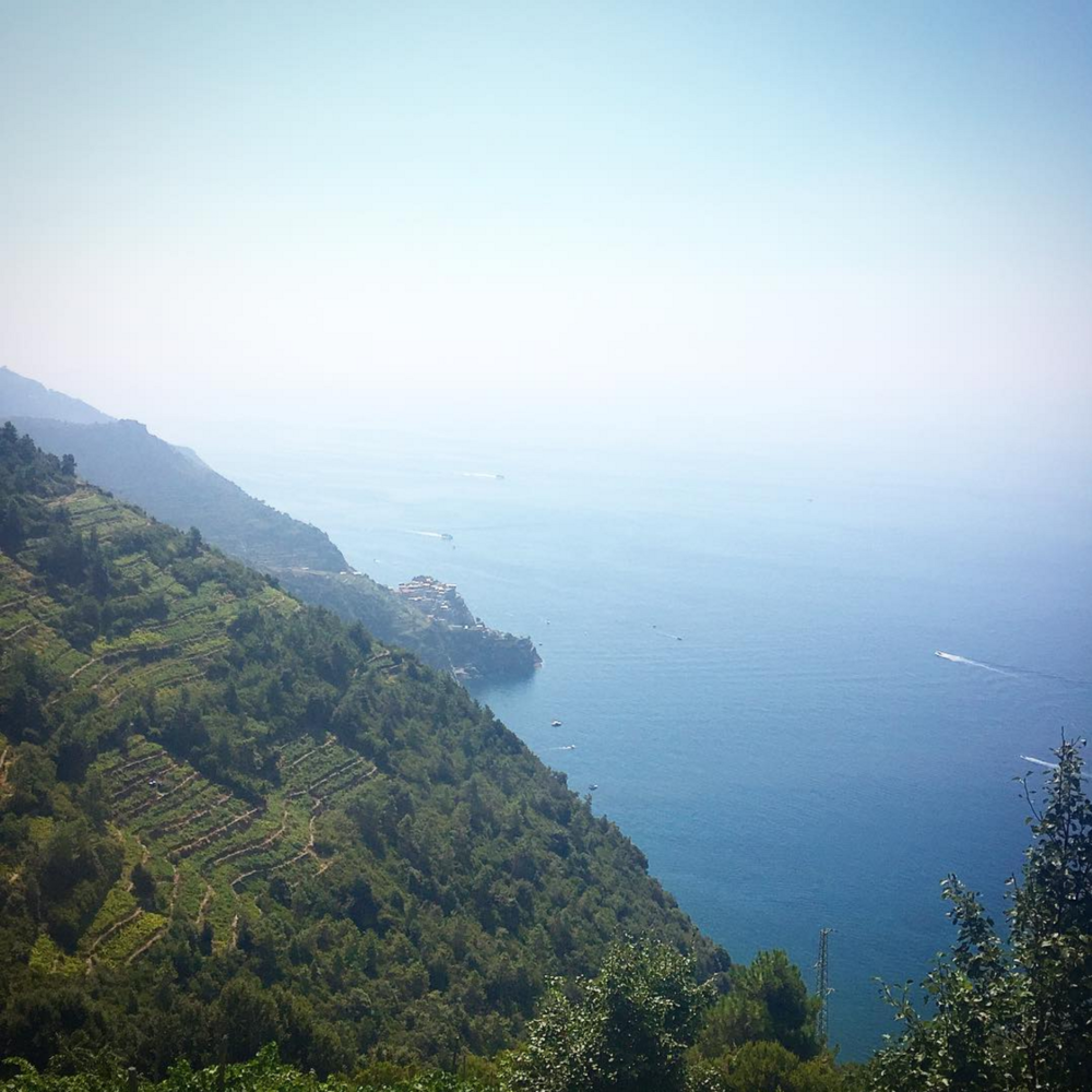 • sea sage sights: endless views on the trial - above the sea somewhere - cinque terre - italia •