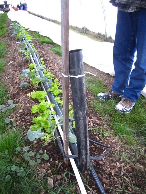 Soil warming system 1