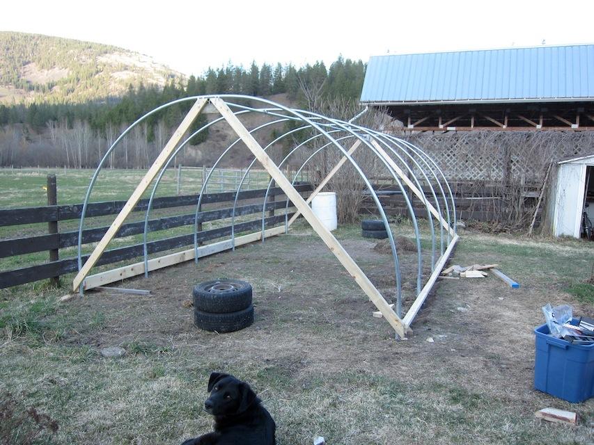 Farm Glance Roots Up Farm S Diy Hoophouse The Ruminant