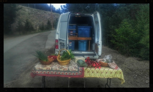 Humble beginnings for the inaugral Friday Night Market at the top of the driveway.
