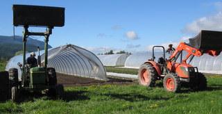 farm 137.jpg