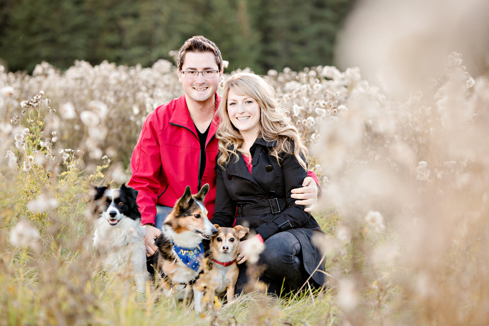 Sean, Chelsey & their 3 pups.    Picture Courtesy of  ENV Photography
