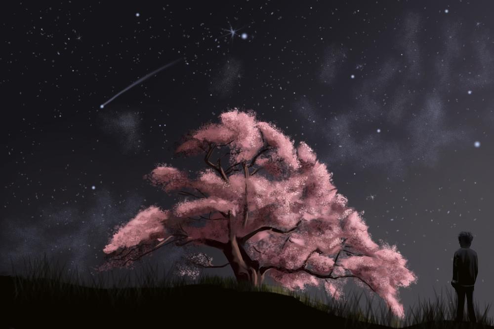 barefoot-cherryblossomatnight