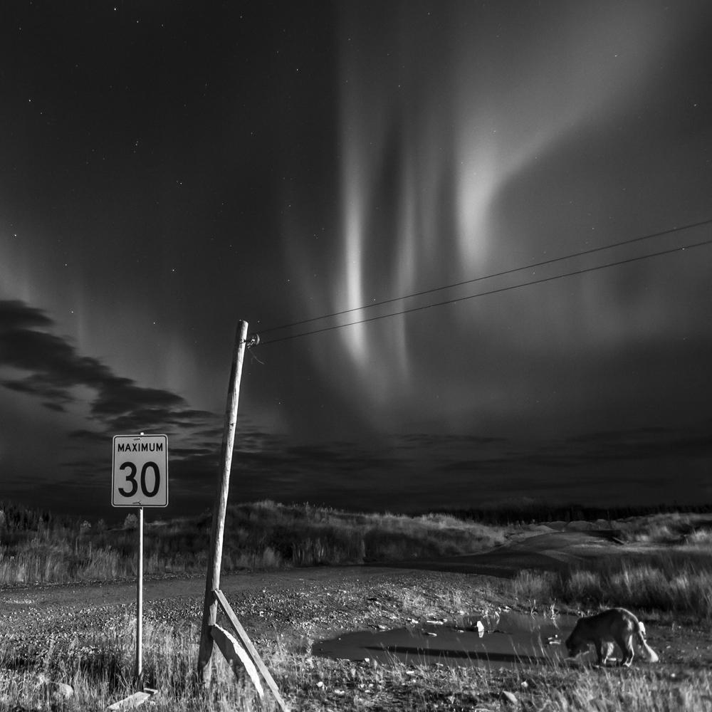 Une aurore boréale illumine le ciel de Waswanipi