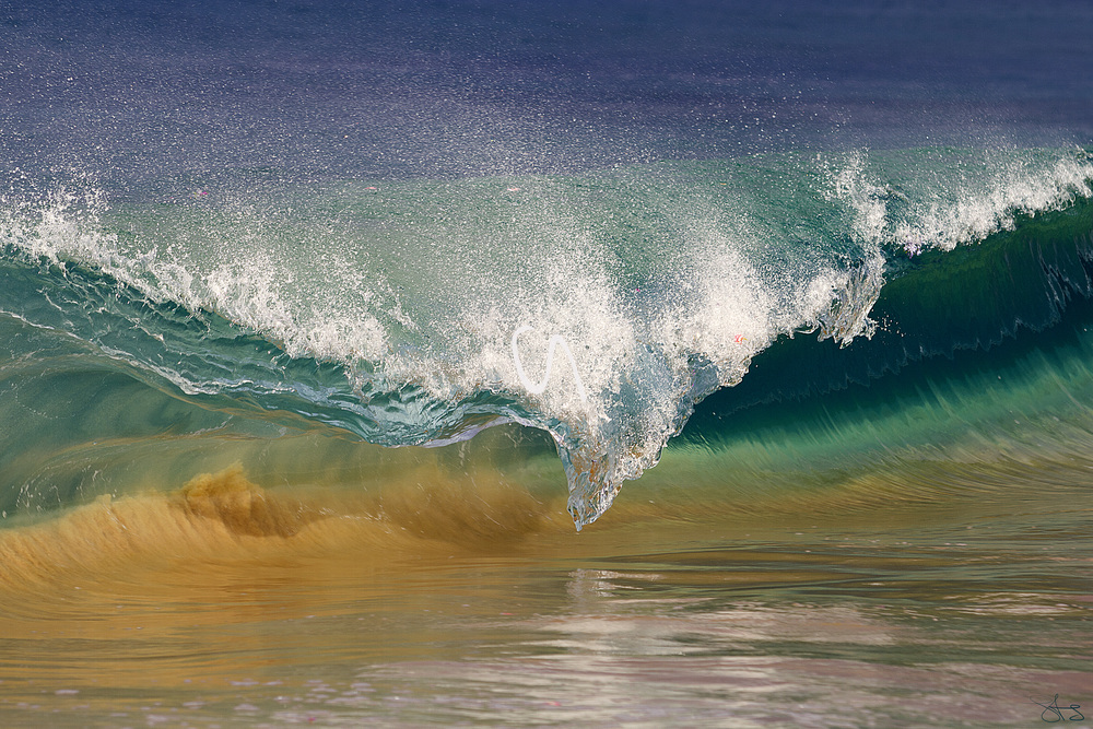 wave of the day!.jpg