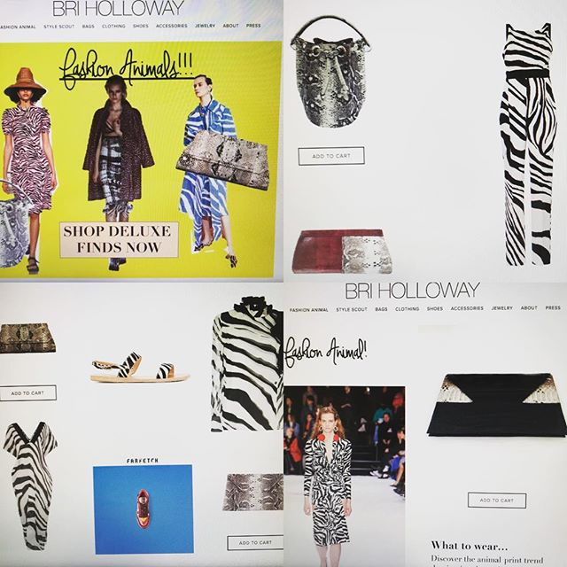 Honored to be collaborating with Bri Schulz and her selective curated online retail site Bri Holloway❣️@briholloway1 #fashionstyle #curator #fashionbag #fashionshop #fashionlover #fashiongirl #fashionstylist #mystyle #shophandbags #shopstyle #womenstyle #womensfashion #womeninbusiness #briholloway