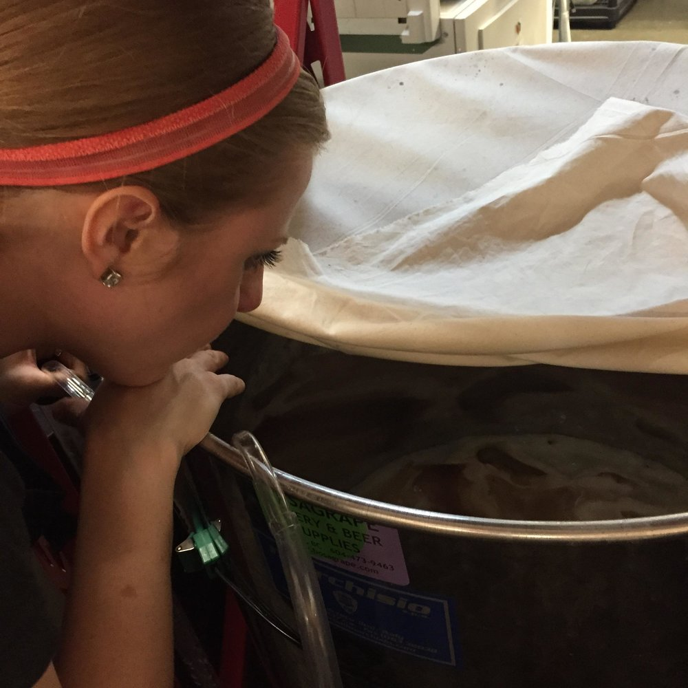 Scoby Watching