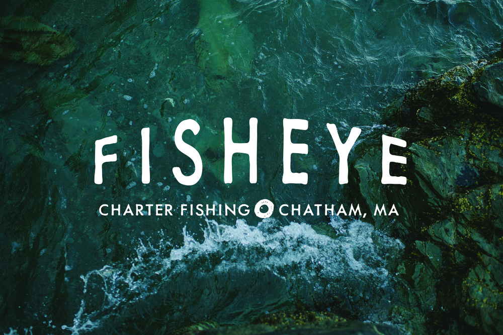 fisheye logo w background.jpg