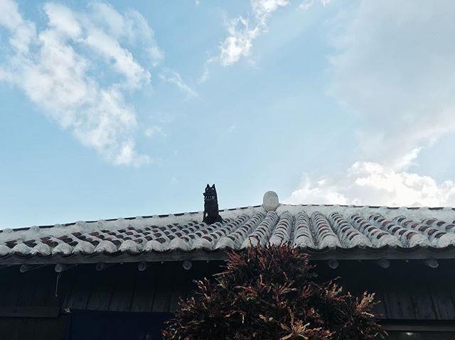 Taketomijima island neojapon.com #okinawa #japan #taketomijima #island #sea #summer