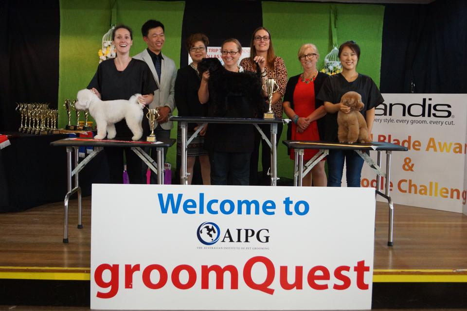 Emma came 2nd at the recent Groomquest competition, in the salon freestyle class