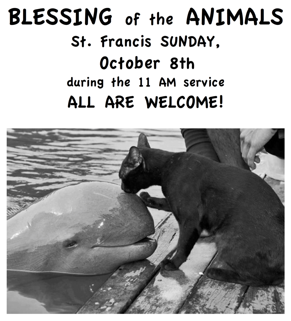 BLESSING of ANIMALS FLIER.png